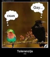 Toleraancija